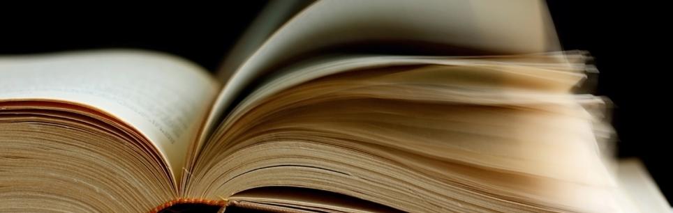 Buch - © BirgitH/pixelio.de